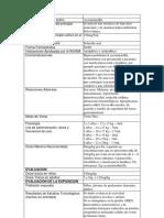 Foro de guía No 3 EvaRiesgo FToc 2020 2 V0 (1)