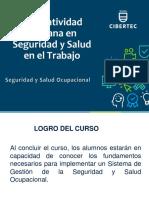 Normatividad peruana SSO