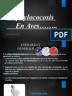 estafilococosis.pptx