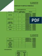 SERVICIOS DIGITALES TU NETFLIX VENEZUELA.pdf