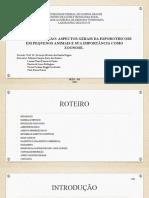 UNIVERSIDADE FEDERAL DE CAMPINA GRANDE.pptx