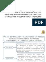 NIA 315 (1).pdf