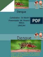 8- DENGUE.pdf