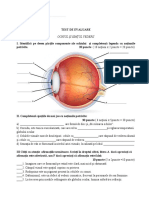 Test de evaluare-Ochiul și simțul vederii