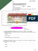 Examen de  microbiologie 2017   Ladjouzi