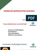 Aula 2 - Aparelho Reprodutor Humano