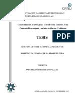 Jade Melissa Pereyda González.pdf