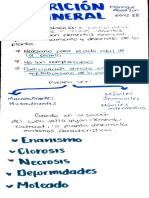 Nutriciónmineral1.pdf
