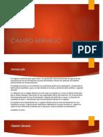 CAMPO BERMEJO POROSIDAD