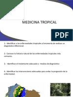 Dengue Chikungunya(1)