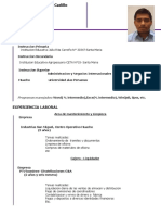 CV ROBERTO VILLALOBOS 2020 (1).pdf