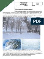 N°10  LA GEOMETRÍA EN LA NATURALEZA..pdf
