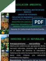 1. Bienes naturales (1).pptx