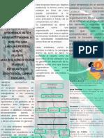 PROYECTO FINAL..pdf