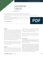 RECONSTRUCCION_DE_CABEZA_Y_CUELLO
