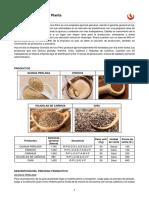 Granitos de oro - Caso.pdf