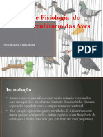 Anatomia e Fisiologia  do sistema circulatorio das Aves