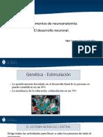 3.Fundamentos de neuroanatomía