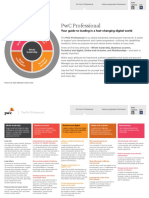 PwC Professional Framework (1).pdf