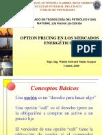 OPCIONES DE PRECIOS EN LOS MERCADOS ENERGÉTICOS.pdf