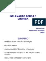 Guia prático de patologia geral  INFLAMACAO