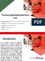 proceso uva presentacion.pptx