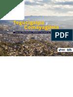 Plan de Acción Tegucigalpa