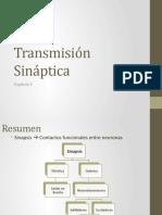 ppt transmisión sinaptica