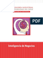inteligencia_de_negocios_2010