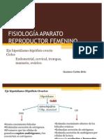 3-fisiologaaparatoreproductorfemenino-100730232826-phpapp01