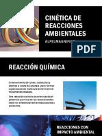 DISEÑO DE REACTORES AMBIENTALES 5.pdf