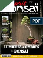 2018-06-01 Esprit Bonsai.pdf