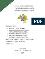 AGENDA 21 LOCAL INFORME.docx