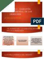 TEMA 2 GARANTÍA PATRIMONIAL DE LOS DERECHOS
