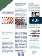 TRIPTICO SPDL (1)