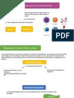 inmunodiagnostico de enfermedades provocadas por virus [Autoguardado].pptx