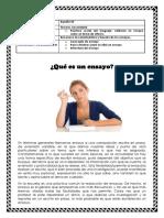 fdc3a7_el-ensayo (1)