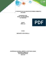 APORTE  INDIVIDUAL VALORACION ECONOMICA DEL AMBIENTE