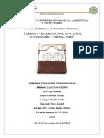 PRACTICA GRUPAL Nª1_ESTEREOSCOPIA (1).docx