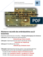 Phénotypes-de-résistance-chez-les-Entérobactéries-2019