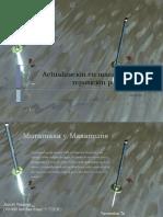 Maniobras piola (1)