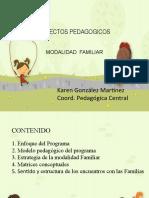 ASPECTOS PEDAGÓGICO 2014 colsubsidio (3)