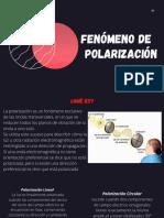 FENÓMENO DE POLARIZACIÓN