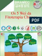 4-Os-5-sabores-da-Fitoterapia-Chinesa
