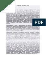 CASCADA DE COAGULACIÓN Y FACTORES DE COAGULACIÓN (2)