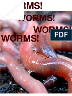 worms final