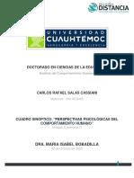 CARLOS SALAS_3.1 CUADRO SINOPTICO_PERSPECTIVAS PSICOLÓGICAS DEL COMPORTAMIENTO HUMANO