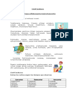 -1_Verbos Comprensión y Producción de Textos.