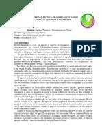 CICLO_DEL_AGUA_Y_DEL_CARBONO (1)