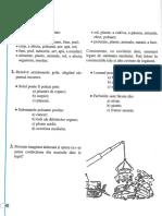 Lecția 11 EPS 5 - Evaluare.pdf